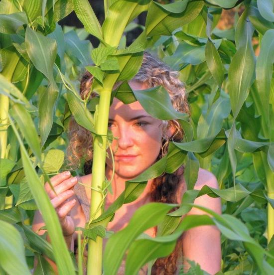 kayla-beans-corn-trellis.jpg