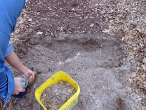 Bio-Intensive Dig Method, First Trench