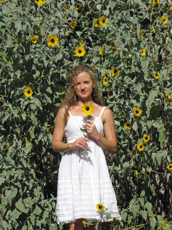 A Sunflower Hedgerow