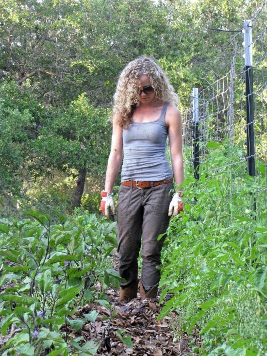 Live Oak Leaf Mulch 6 to 8 Inches Thick