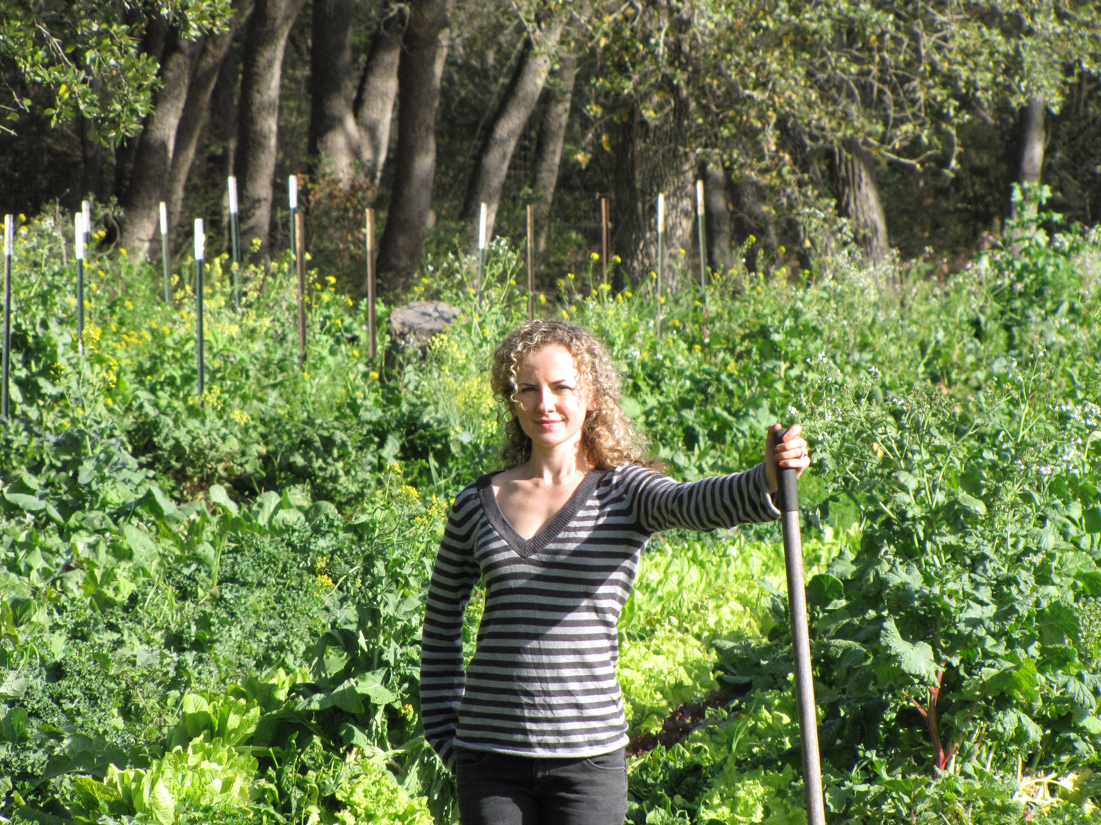Chemical free pest control four string farm for Gardening classes near me