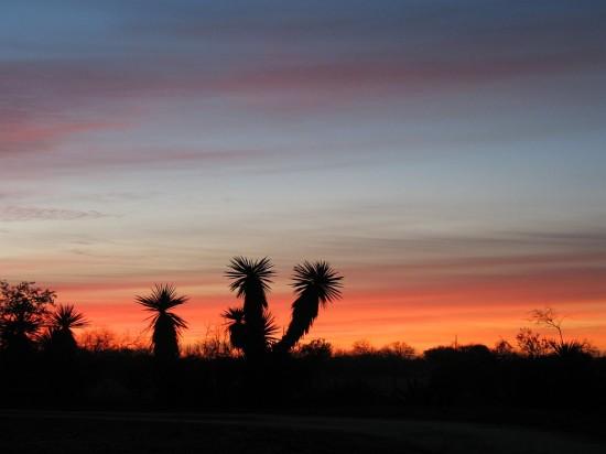 Sunrises and Sunsets Al Past 2
