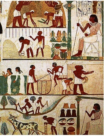 Ancient Egyptian Farmer's Calendar.   Wall mural showing land preparation, ploughing, reaping, winnowing, grain storage (image courtesy biblearcheaology.info)