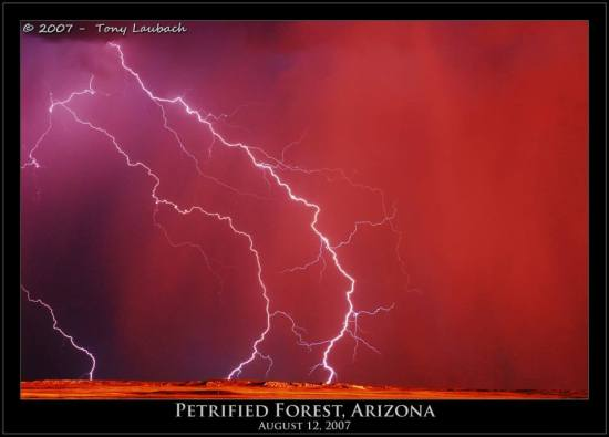 Tony Laubach Lightning Petrified Forest