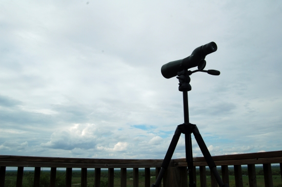 Hawks spotting scope sky 9-29-14