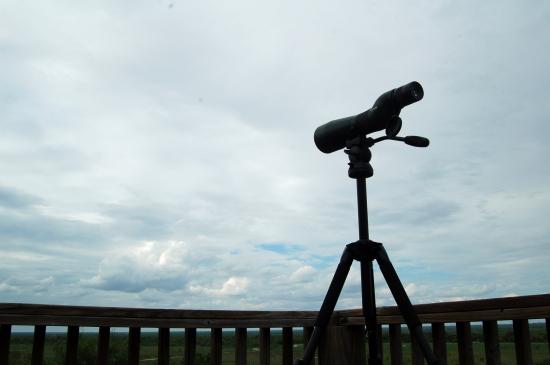 Hawks spotting scope sky 9-29-14