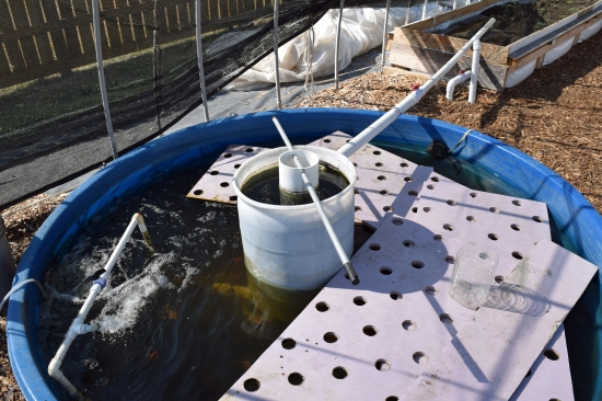 Water Circulates from Tank to Plants and Back